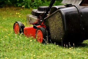 Testing Best Two-Stroke Engine Oils For Lawn Mowers