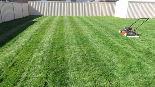 Example of Lawn Striping