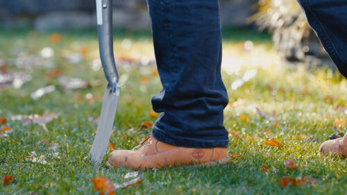 Aerate your lawn. Prep lawn for winter