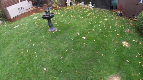 Mow and clean your lawn from leaves. Prep lawn for winter