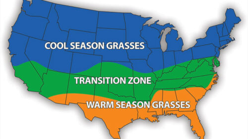 Areas for grasses