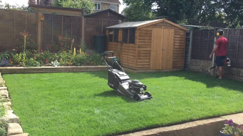 lawn and lawnmower