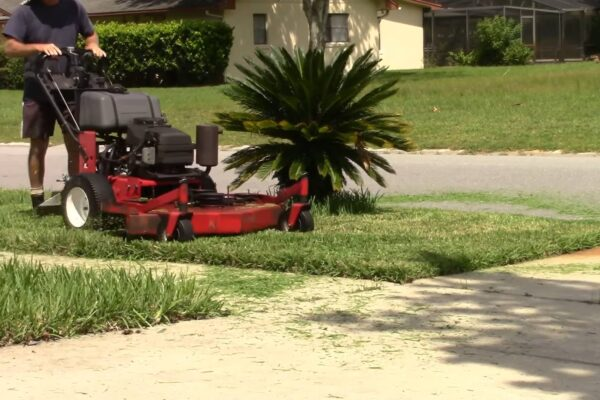 Best Commercial Lawn Mower - Reviews & Buyer's Guide
