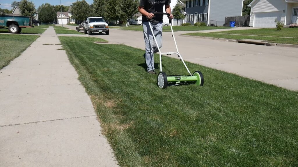 Push Lawn Mower in action