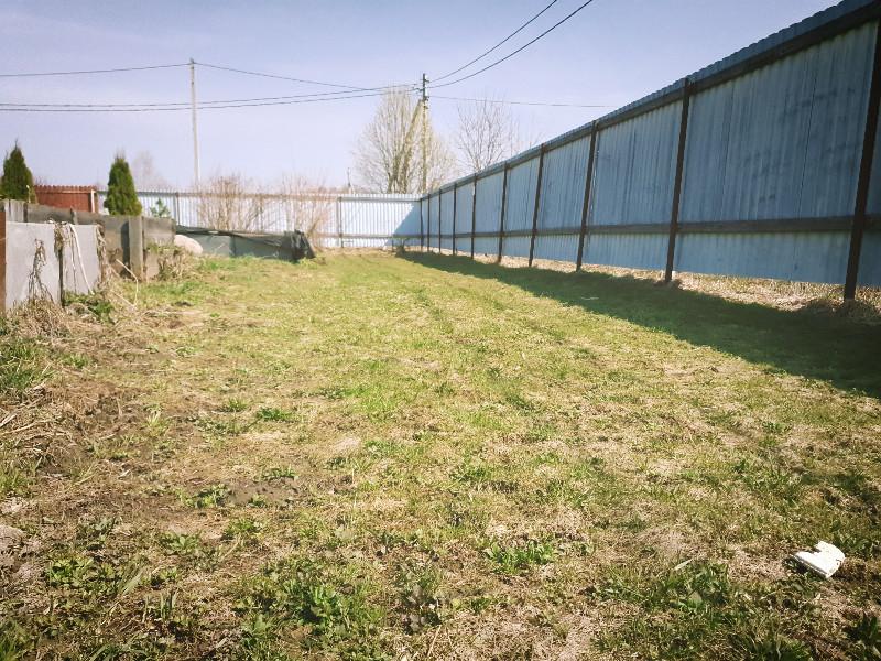 peters_lawn Apr 2021