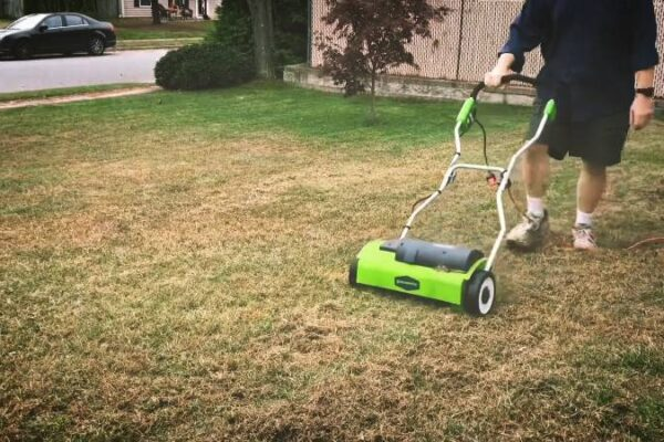 Everything You Should Know About Greenworks Corded Dethatcher 27022