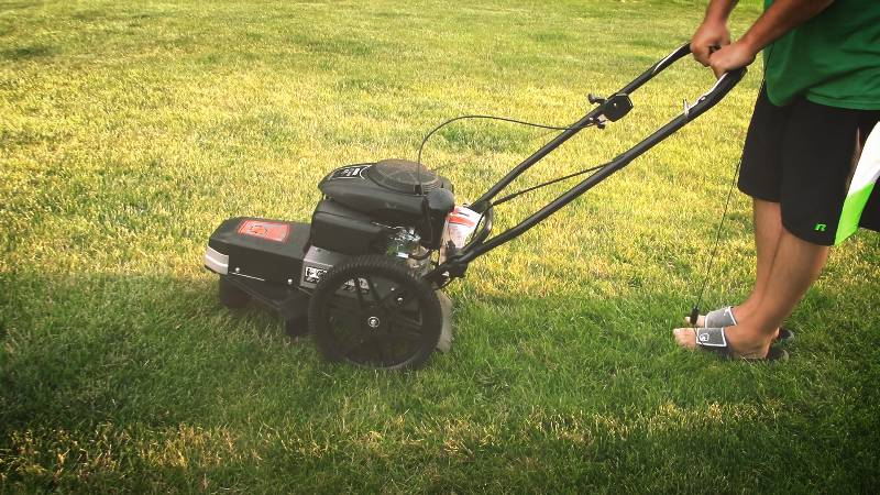 Remington RM1159 Walk Behind Trimmer review